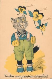 Dressed humanized cat caricature vintage greetings postcard France chat humanise