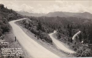 Switchback on the REDWOOD HIGHWAY, CA, 20-40s: Patterson Photo 860
