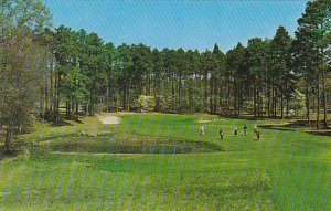 The Cathedral 15th Hole No 4 Golf Course Pinehurst North Carolina