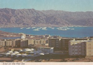 EILAT , Israel , 50-70s ; On the Red Sea #2