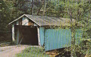 Covered Bridge In Eastern Jackson County Vermont