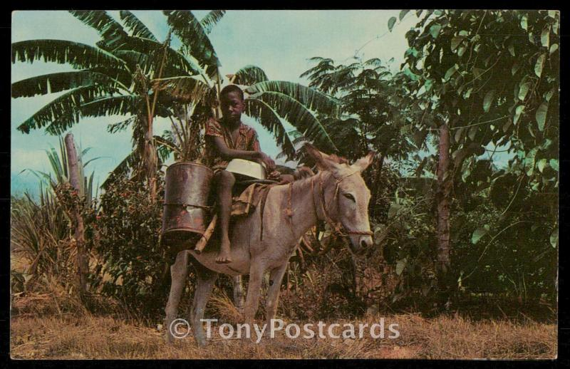 WATER BOY Dominion of Jamaica