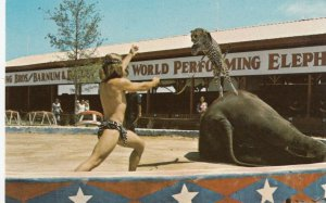 HAINES CITY , Florida , 1970s; Circus World, Leopard and Elephant Show