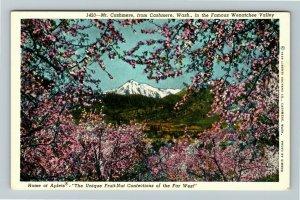 Cashmere WA- Washington, Wenatchee Valley, Vale of Cashmere, Chrome Postcard