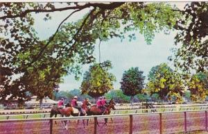 Out For A Morning Workout On the Main Track At Beautiful Saratoga New York