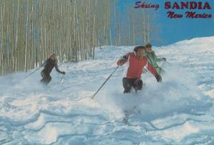 Skiing Sandia New Mexico Ski Advertising The Rockies Postcard