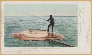 Yellowstone National Park-Man Fishing at Fish Pot Hot Springs c1900- 1905