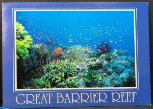 Great Barrier Reef Australia Vintage Postcard
