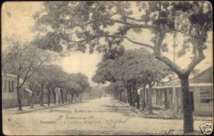 new caledonia, NOUMEA, Wagram Avenue (1908)