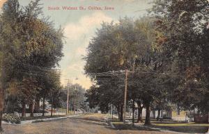 Colfax Iowa~South Walnut Street Homes~Busy Wires~Dirt Road~c1910 Postcard