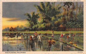 Rice Planting, Philippine Islands, Early Postcard, Used in 1958