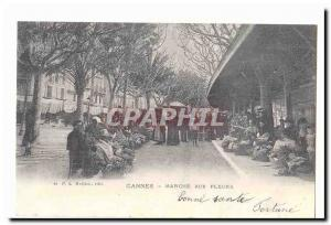 Cannes Old Postcard Flower Power (reproduction)