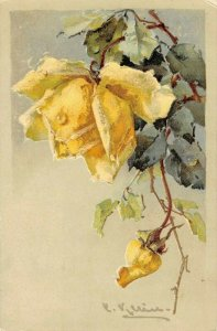 LP10 Catherine Klein Flowers Floral Postcard Artist Signed Yellow Rose Bud PFB