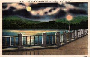 Moonlight on Lake Tahoma,Western NC