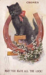 Cromer Norfolk Black Cat Folding Mailing Novelty Antique Rare Postcard