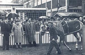 Nostalgia Postcard 1951 Winston Churchill at Hurst Park Races, Repro Card NS7