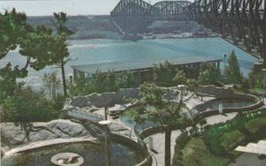 Pools for Seals, Aquarium de Quebec , Quebec , Canada , 50-60s
