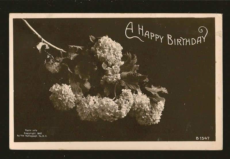 Copyright 1907 A Happy Birthday Real Photo Postcard Postmarked Barrie Ont 1910