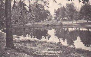 Washington DC U S Soldiers Home The Lake & Geese Albertype