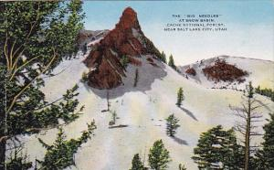 The Big Needles At Snow Basin Cache National Forest Near Salt Lake City Utah