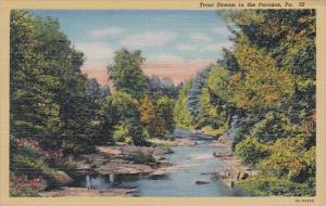 Trout Stream In The Poconos Pennsylvania
