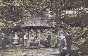 The Waterstme Eastman Springs Park Michigan