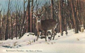 Sportsman Paradise Deer State Of Maine VTG P71