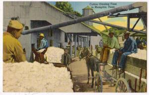 Cotton Ginning Time, Memphis TN