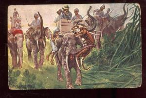 026125 Indian ELEPHANTS & Tiger HUNT by FROMME Vintage PC