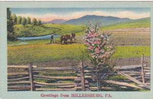 Peennsylvania Greetings From Millersburg