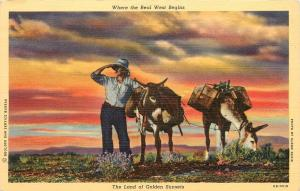Where the Real West Begins Land of Golden Sunsets Quest Kelly Lyon Postcard
