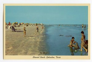 Postcard Stewart Beach Galveston Texas Standard View Card