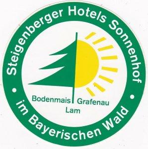 Germany Grafenau Steigenberger Hotels Sonnenhof Vintage Luggage Label sk2886