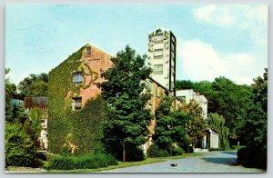 Lynchburg TN~Jack Daniels Hollow~Ivy Covered Distillery~Dog Crosses Road~1960s