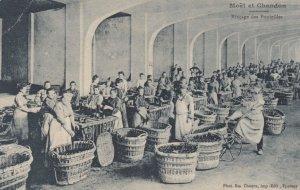 Moet et Chandon, Marne, France, 00-10s ; Rincage des Bouteilles
