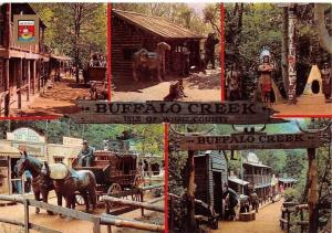 I.W. Blackgang Chine Buffalo Creek, Horses Carriage, Postcard