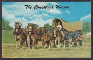 Conestoga Wagon Horses Postcard 4474