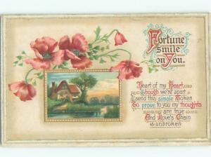 Divided-Back BEAUTIFUL FLOWERS SCENE Great Postcard AA2728