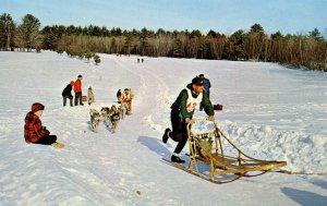 NH - Championship Dog Sled Racing