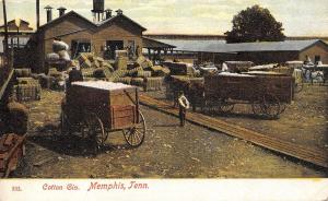Memphis Tennessee~Cotton Gin Workers~Bales~Wagons~Boardwalk~Water Tower~1909 PC