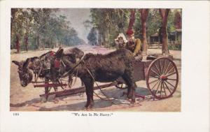 Donkey Cart , 00-10s