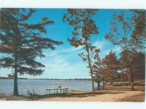 Pre-1980 LAKE SCENE Chicot Lake - Near Lake Village & Mcgehee Arkansas AR AE4024