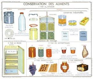 Milk Fridge Storage Food Preservation Old School Wall Chart Postcard