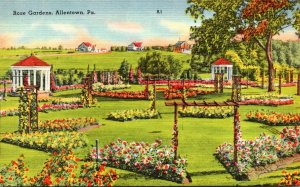 Pennsylvania Allentown Rose Gardens 1952