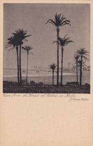 HAIFA , Israel , 00-10s , View from the forest of Palms