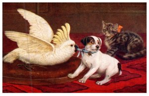 Dog ,  kitten , bird