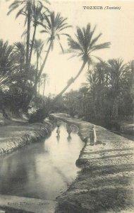Postcard TUNISIA Tozeur jungle woods forest palms man nature artistic canal kids