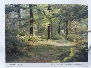 Swithland Woods Vintage Postcard Photo by Mrs M J Gilham