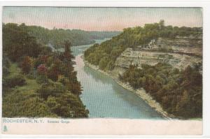 Genessee Gorge Rochester New York 1910c postcard
