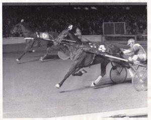 RP; WESTBURY, New York, Manotick Dandy Wins Harness Horse Race, Roosevelt Rac...